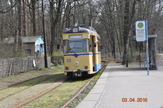 Tram 30 is seen at Rahnsdorf about to head for Woltersdorf