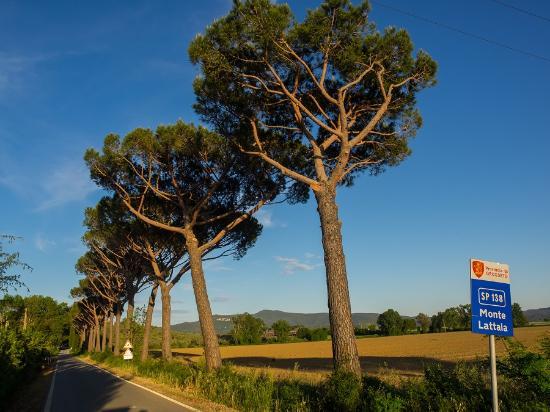 Roccastrada, İtalya: Dintorni