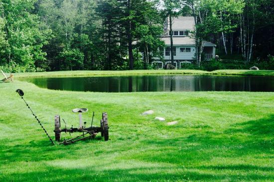 Dover, VT: Pond