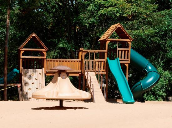 Montague, MI: playground