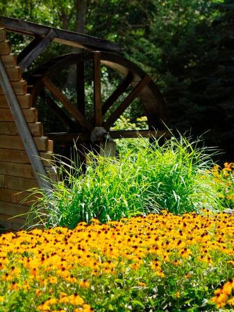 Montague, MI: waterwheel