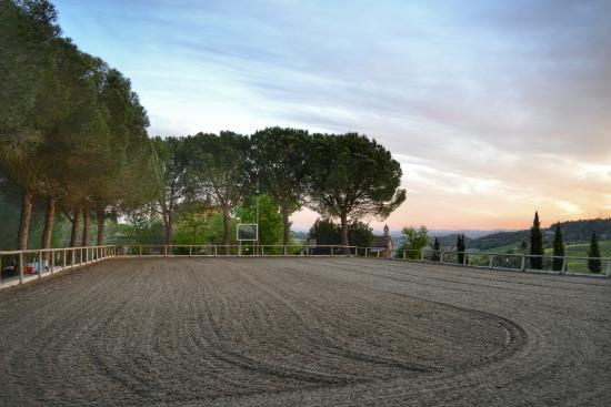Il Paretaio: where the riding lessons happen!