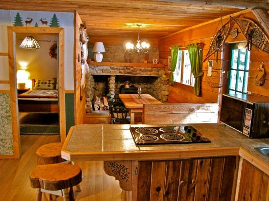 Inside Elk Cabin Picture Of Cozy Cabins Nature Resort