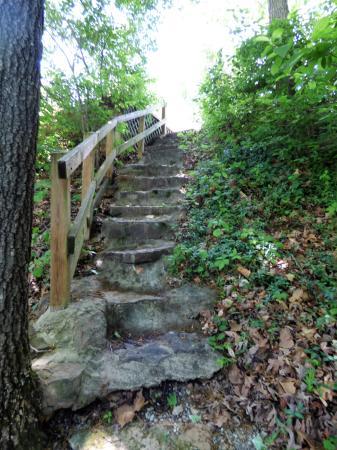 Days Inn Eureka Springs: steps