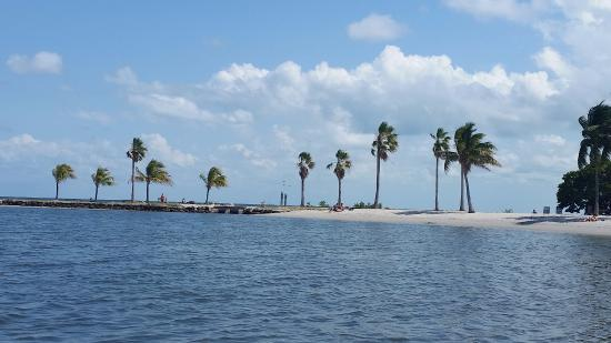 Matheson Hammock Park: View from the beach -