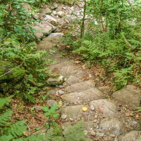 Sutton, Canadá: Sentier menant au sommet