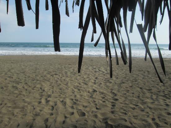 Parrita, Costa Rica: From Clandestino beach hut
