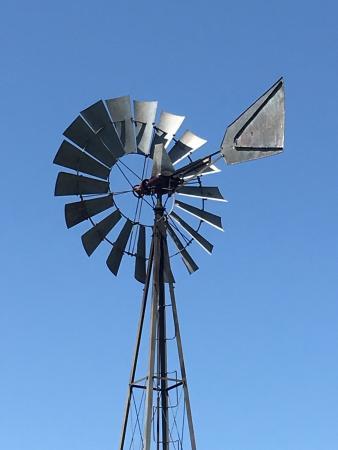 Mineola, TX: photo9.jpg