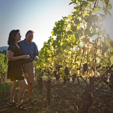 McMinnville, OR: A walk in the vineyard