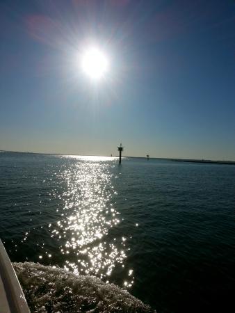 Аннаполис, Мэриленд: Another Charter on Pelican Catch