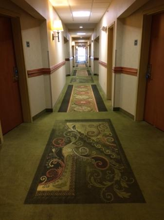 Canton, MI: Hallway to rooms