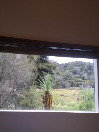 Peppers Awaroa Lodge: photo6.jpg