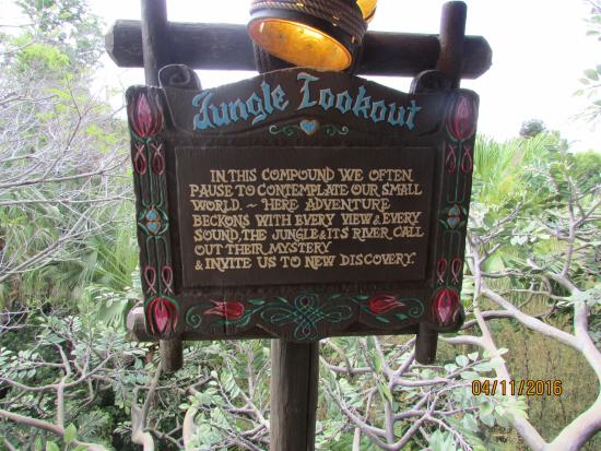 Jungle Lookout - Picture of Swiss Family Treehouse, Orlando