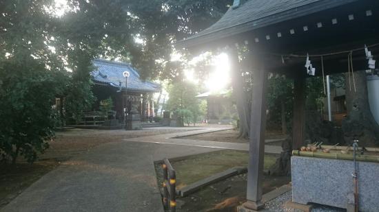 Tenso Shrine (Kyodo)