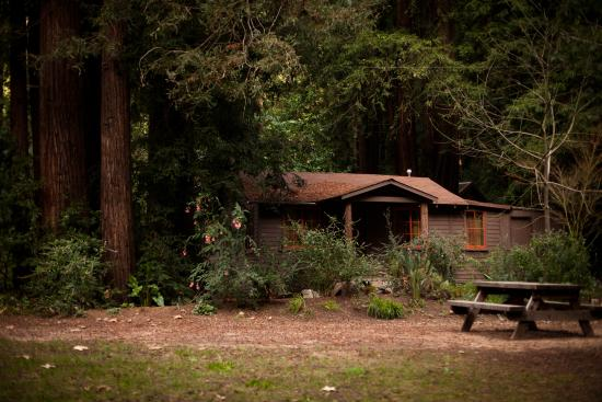 Glen Oaks Big Sur: Big Sur Cabin