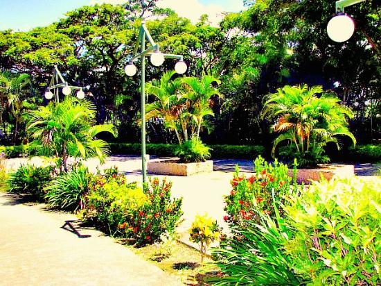 Wailoaloa Beach Resort Fiji Photo