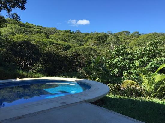 B&B Tranquilo : Pool & Jungle View