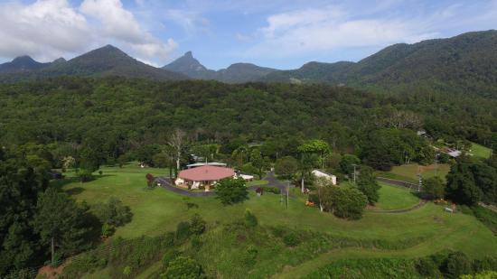 A View of Mt Warning Bed & Breakfast: surrounded by green