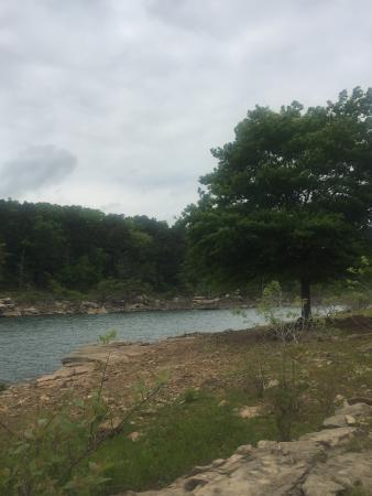 Greers Ferry, أركنساس: Nice swimming spot where the creek comes into the lake