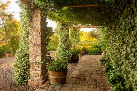 Bodega Renacer: Winery Halls