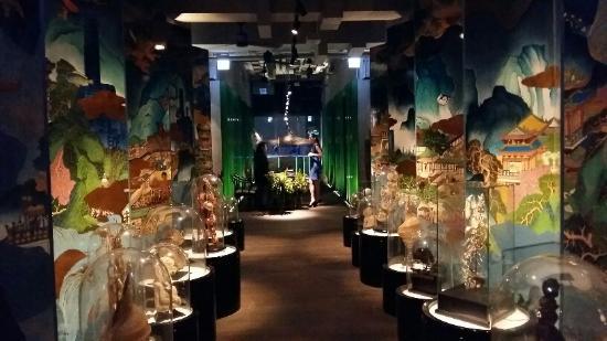 Seafood Room 海鮮房