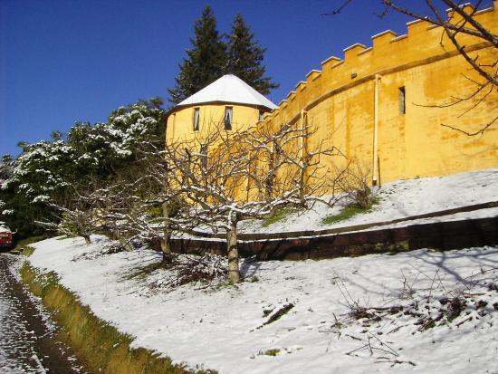 The Mudcastle : Orchard in snow July 2011