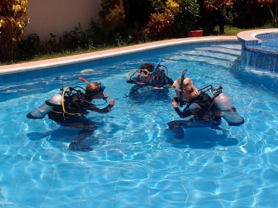 ABWonderdive + Bed & Breakfast : Using pool for OWD course.
