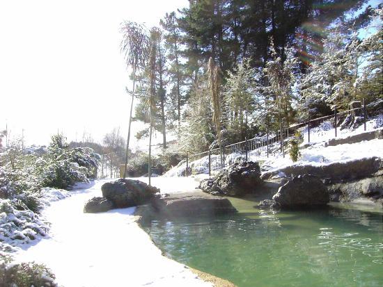 The Mudcastle: Main pool