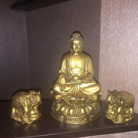 sabai dee thai massage intim massage fyn