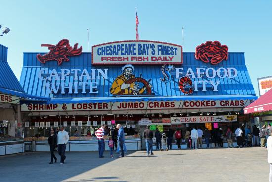 Seafood market picture of captain white 39 s seafood for Washington dc fish market