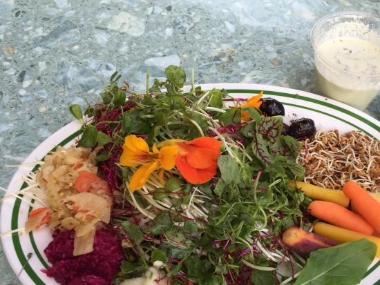 Raw Vegan Restaurants West Palm Beach