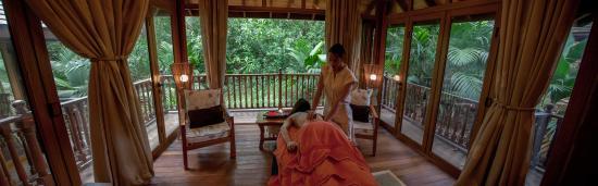 Cerf Island, Seychellen: Spa Therapy Room