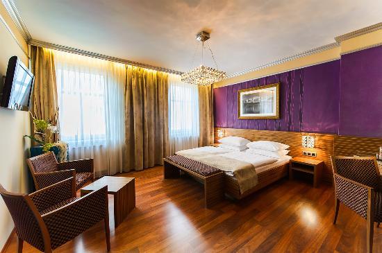 Hotel Vienna: Doppelzimmer