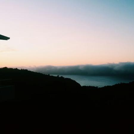 Surfari: Early morning