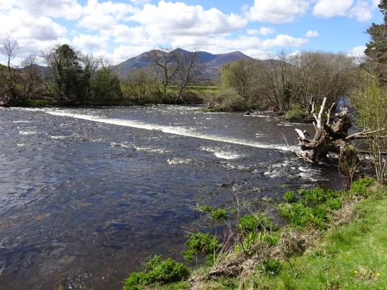 Holiday Inn Killarney: River near hotel