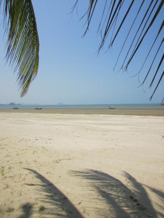 Terra Selisa Dolphin Beach Resort Hua Hin Photo