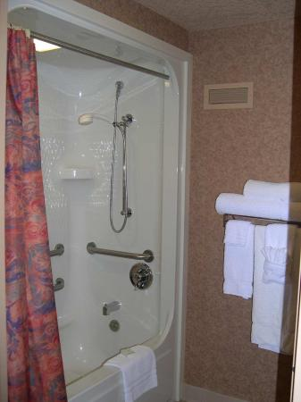 Charleston, Virginia Barat: Accessible Tub