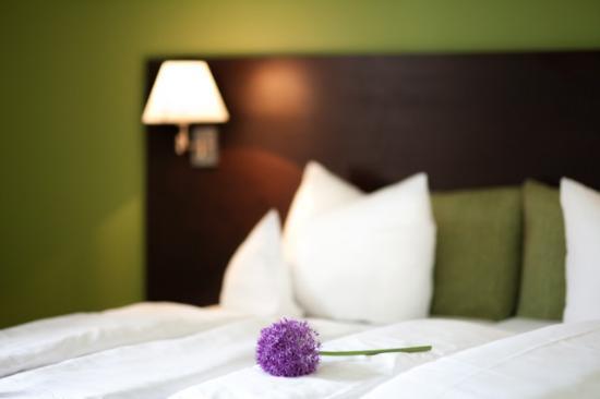 relexa hotel Bad Steben: Zimmerbeispiel