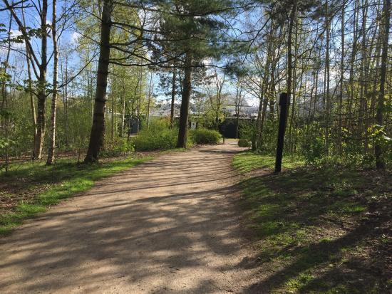 Dalen, เนเธอร์แลนด์: Center Parcs De Huttenheugte