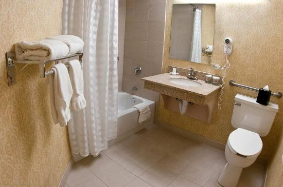 Embassy Suites by Hilton Denver Stapleton: Accessible Bath