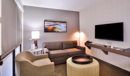 Embassy Suites by Hilton Denver Stapleton: Accessible Room  Living Area