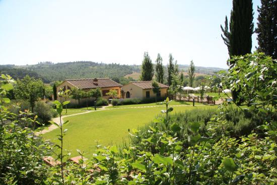 Montespertoli, Italien: Giardino