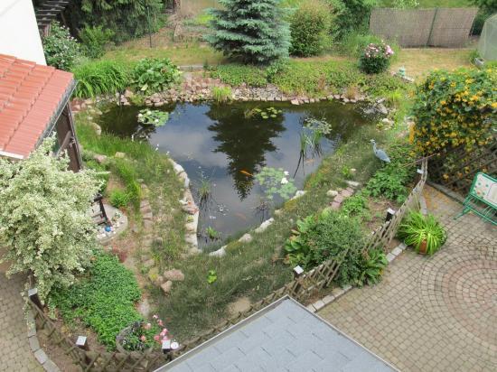 Niederau, Germany: Außenanlage - Goldfischteich