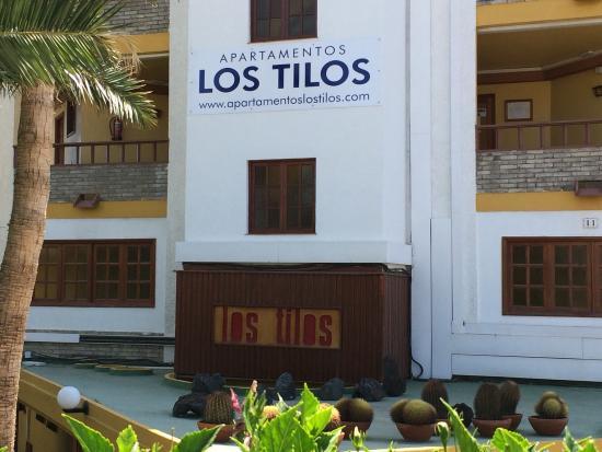 Los Tilos