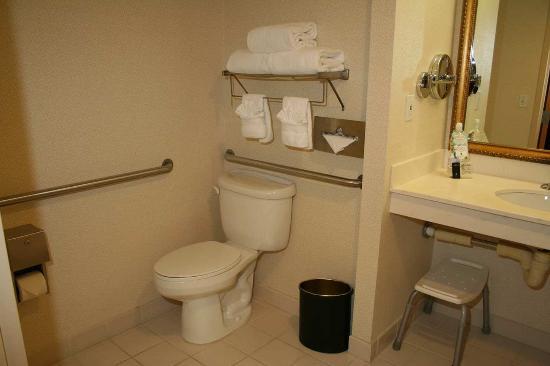 Dublin, OH: Accessible Suite