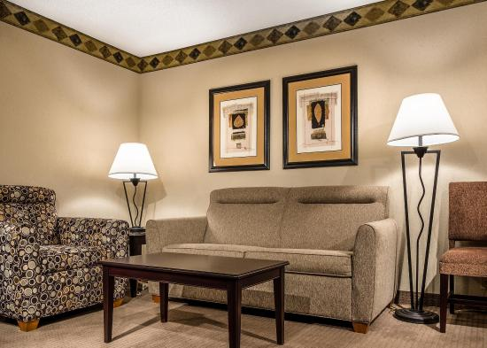 Embassy Suites by Hilton Atlanta Alpharetta: Living Room 2