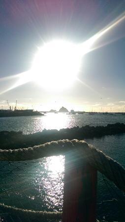 New Plymouth, Nowa Zelandia: IMAG0121_large.jpg