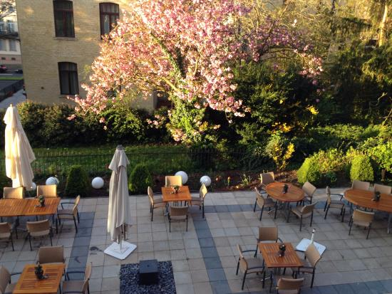 Hotel Oranien: This is the lovely garden where you can sit and enjoy coffe/tea or anything you like.