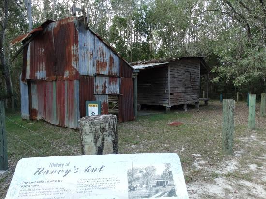 Noosaville, Australia: Harry's Hut