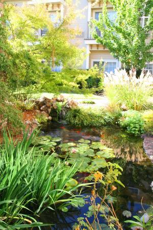Ukiah, Kalifornia: Koi Ponds-Courtyard
